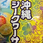 「沖縄シークヮーサー」沖縄のシークワサー味の美味しいポテトチップス【沖縄】