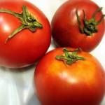 塩トマト 八代の美味しいトマト