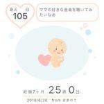 マタニティ記録〜妊娠7カ月〜