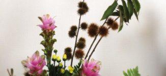 秋のお花 クルクマ 栗 生け花