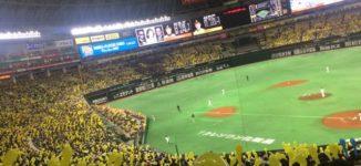 「ホークスvsロッテ」ヤフオクドームのカウンターシートで野球観戦【福岡市中央区】